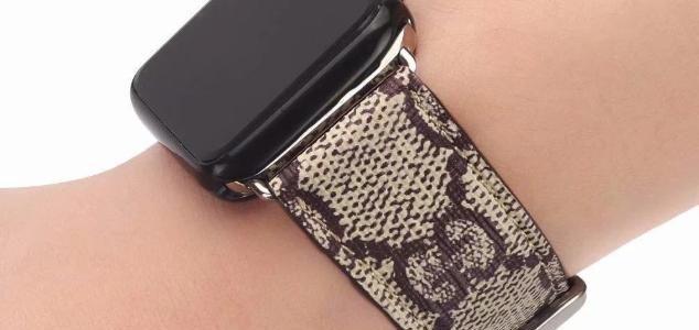 Dây đồng hồ Gucci cho Apple Watch 121